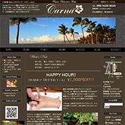 Carna カルナホームページ画像